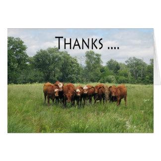 Día administrativo de las vacas favorable tarjeta de felicitación
