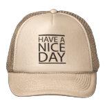 Día agradable gorras