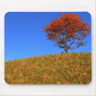 Día claro Mousepad del otoño