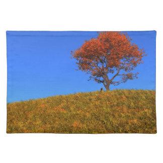 Día claro Placemat del otoño Manteles Individuales