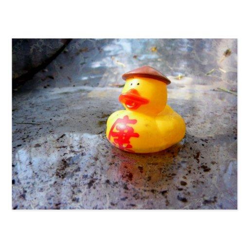 Día de Duckys Postal