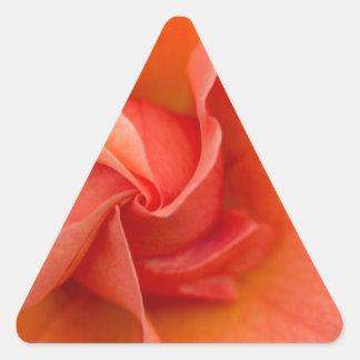 Día de elección subió pegatina triangular