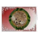 Día de fiesta Pomeranian Tarjeta De Felicitación