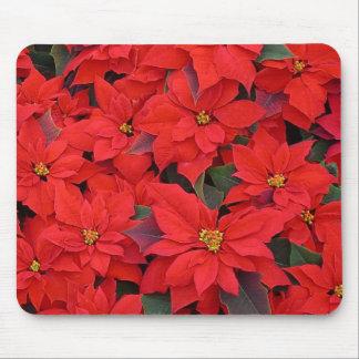 Día de fiesta rojo del navidad de los Poinsettias Tapete De Ratones