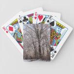 Día de invierno barajas de cartas