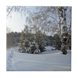 Día de invierno Nevado Azulejo Cuadrado Pequeño