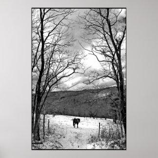 Día de invierno poster