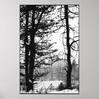 Día de invierno rígido póster