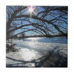 Día de invierno soleado en el río azulejo cerámica
