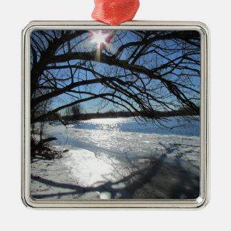 Día de invierno soleado en el río adorno de reyes