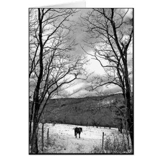 Día de invierno tarjeta de felicitación