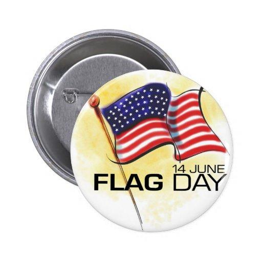 Día de la bandera 14 de junio pin