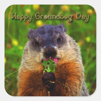 Día de la marmota feliz que come la flor