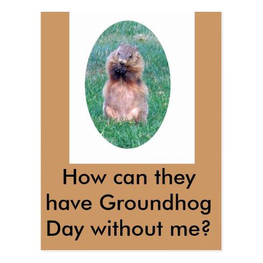 Día de la marmota postales