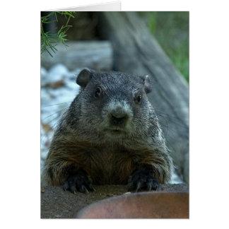 ¡Día de la marmota! Tarjeta