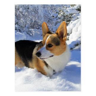 Día de la nieve del Corgi Galés Postal