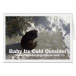 ¡día de la nieve del mickey, bebé su exterior tarjeta de felicitación