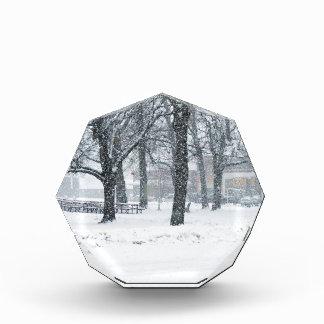 Día de la nieve en Kahoka MES