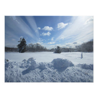 Día de la nieve fotografia