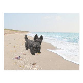 Día de la playa tarjeta postal