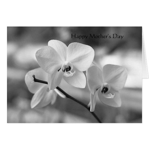Día de madres felicitacion