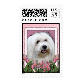 Día de madres - tulipanes rosados - algodón de sellos