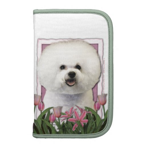 Día de madres - tulipanes rosados - Bichon Frise Organizador