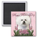 Día de madres - tulipanes rosados - Bichon Frise Iman De Nevera