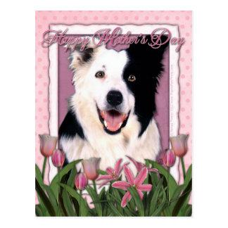 Día de madres - tulipanes rosados - border collie tarjeta postal
