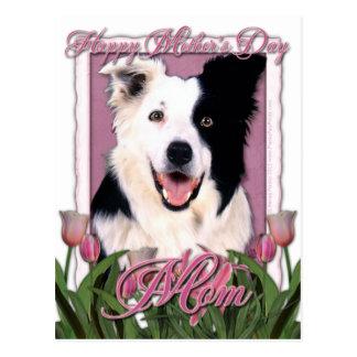 Día de madres - tulipanes rosados - border collie tarjetas postales