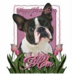 Día de madres - tulipanes rosados - Boston Terrier Esculturas Fotográficas