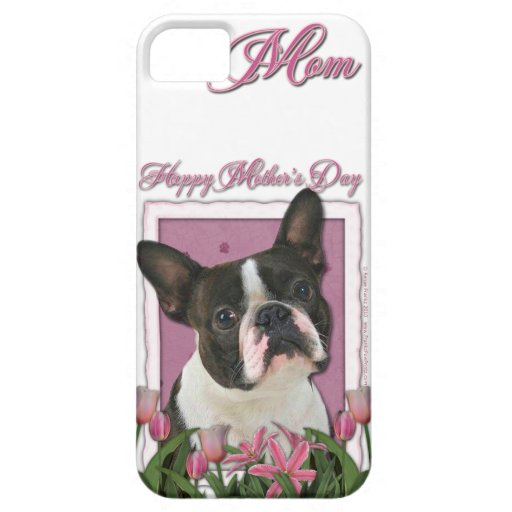 Día de madres - tulipanes rosados - Boston Terrier iPhone 5 Carcasa