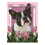 Día de madres - tulipanes rosados - Boston Terrier Postal