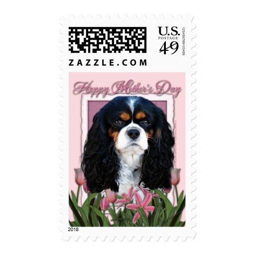 Día de madres - tulipanes rosados - caballeros - envio
