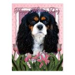 Día de madres - tulipanes rosados - caballeros - postal