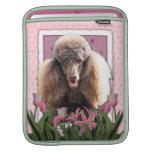 Día de madres - tulipanes rosados - caniche - choc mangas de iPad