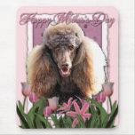 Día de madres - tulipanes rosados - caniche - choc tapete de ratones