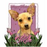 Día de madres - tulipanes rosados - chihuahua esculturas fotográficas
