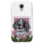 Día de madres - tulipanes rosados - Coonhound de B