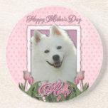 Día de madres - tulipanes rosados - esquimal ameri posavasos cerveza