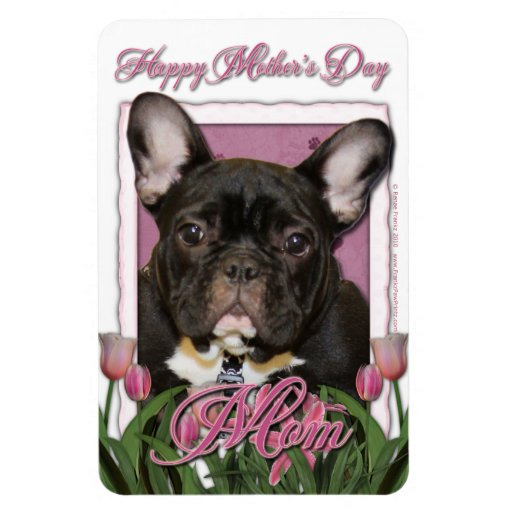 Día de madres - tulipanes rosados - Frenchie - tru Imán