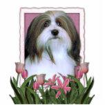 Día de madres - tulipanes rosados - Havanese Escultura Fotografica