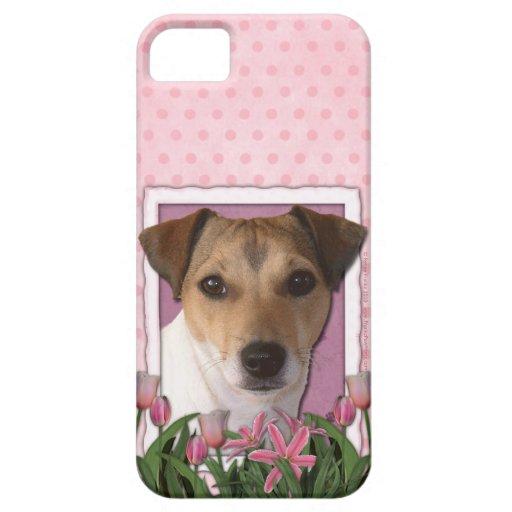 Día de madres - tulipanes rosados - Jack Russell iPhone 5 Protectores