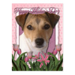 Día de madres - tulipanes rosados - Jack Russell Postal