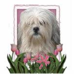 Día de madres - tulipanes rosados - Lowchen Escultura Fotografica