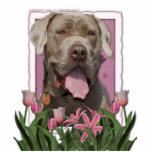 Día de madres - tulipanes rosados - mastín - fisgó escultura fotografica