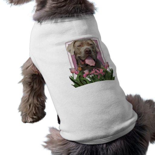 Día de madres - tulipanes rosados - mastín - fisgó ropa de perros