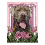Día de madres - tulipanes rosados - mastín - fisgó tarjetas postales