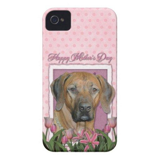 Día de madres - tulipanes rosados - Rhodesian Ridg iPhone 4 Cárcasa