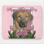 Día de madres - tulipanes rosados - Rhodesian Ridg Alfombrilla De Ratones